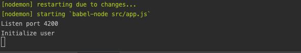 'npm run start terminal' view